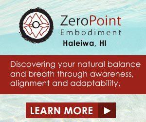 Zero Point Embodiment